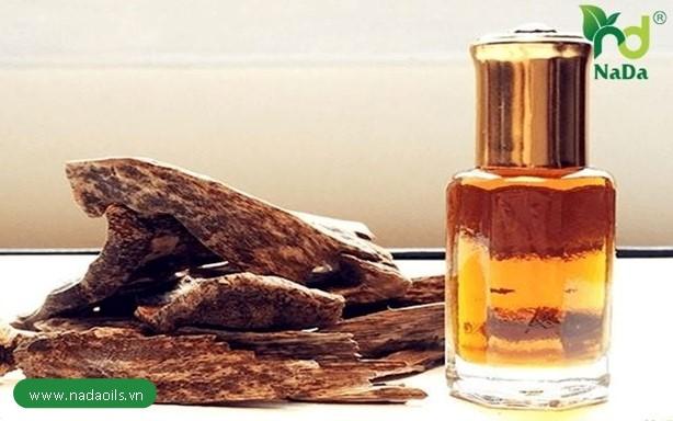 Tinh dầu tràm hương có tác dụng gì?